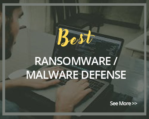 Best Ransomware/Malware Defense