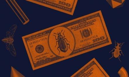 Top bug bounty programs announced for 2020