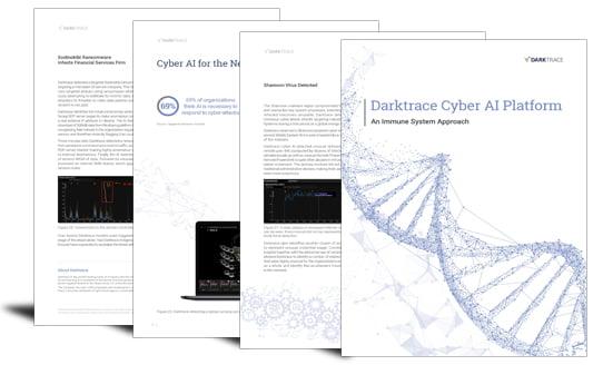 The Cyber AI Platform – an immune system approach